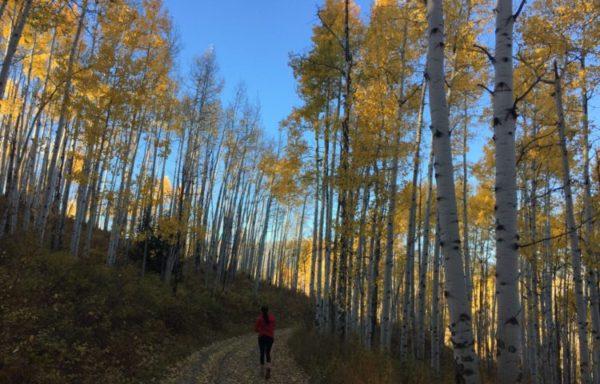 Colorado Autumn Adventures