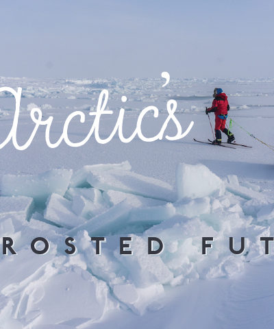 The Arctic's Defrosted Future